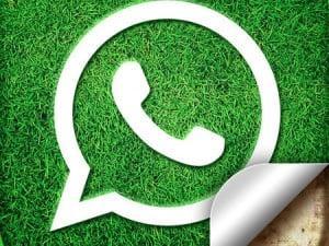 whatsapp-logo,K-F-396015-13
